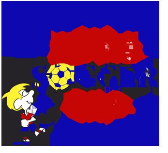 Euro Soccer USA